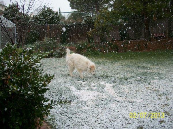 Feb snow 013