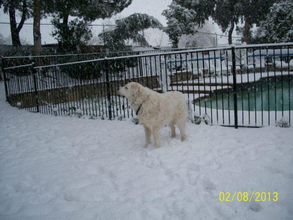 Feb snow 240