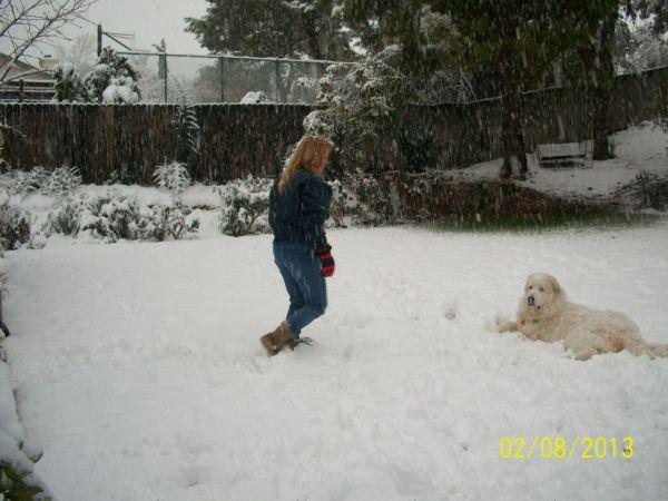 Feb snow 248