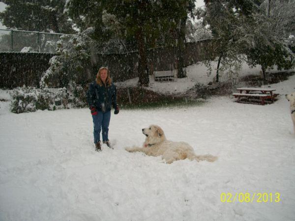 Feb snow 249