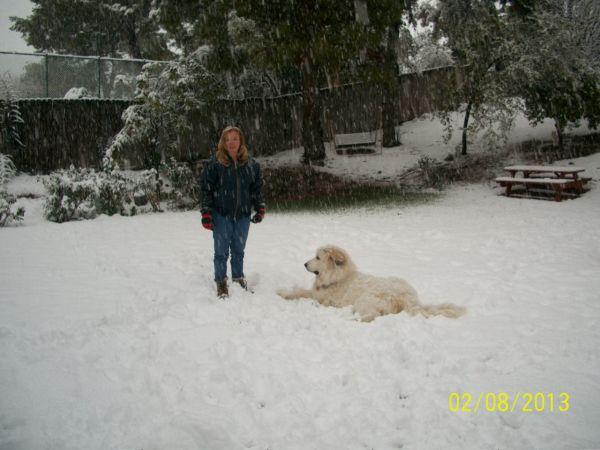 Feb snow 250