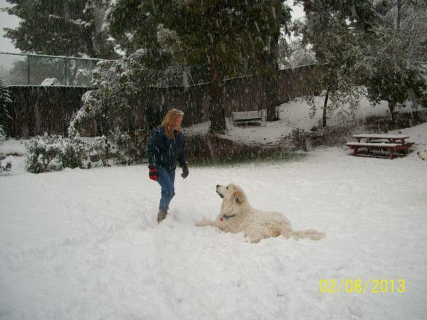 Feb snow 253