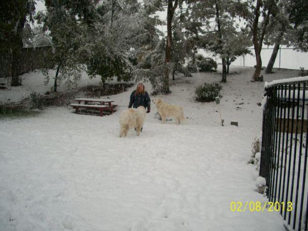 Feb snow 262